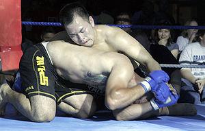 Mixed martial arts bout