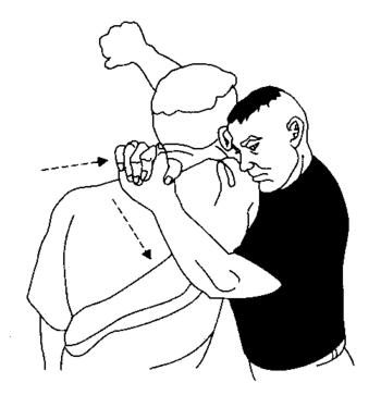 Image displaying an arm triangle choke (side c...