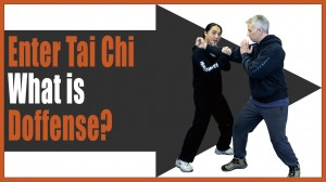 Kung Fu Training Drill